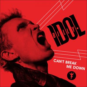 Billy Idol (Can't break me down – Singel)