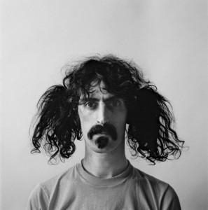Zappa För Nybörjare